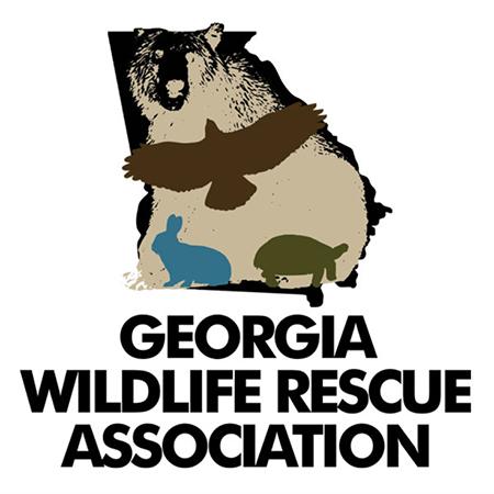 Georgia Wildlife Rescue Association