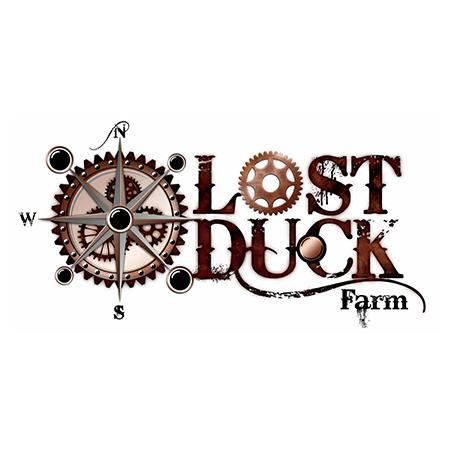 Lost-Duck-farm