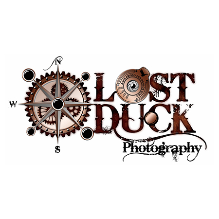 Lost-Duck-photography